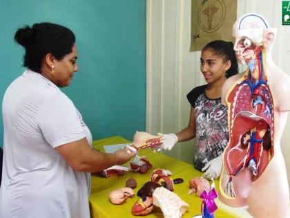 Mostra Cultural de Guaravera